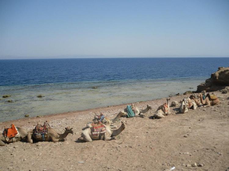 Sharm El Sheikh Beach