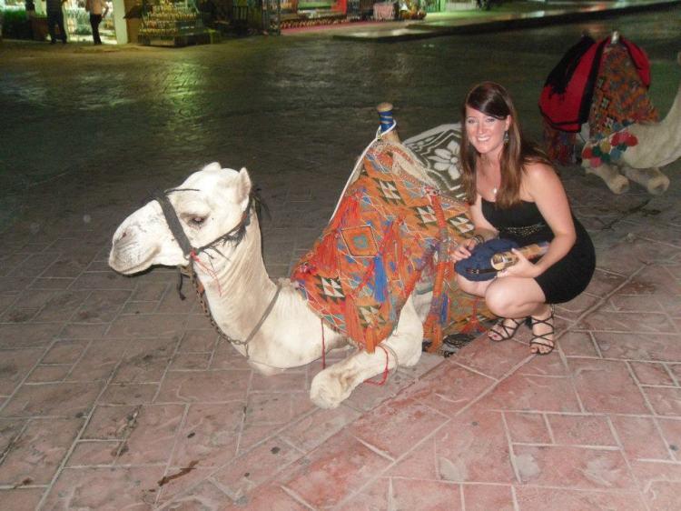 Exploring Egypt